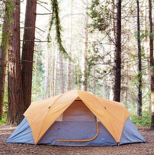 Amazon Basics 8 Person Tent